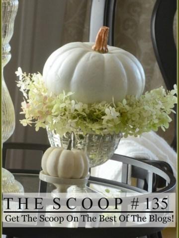 THE SCOOP #134