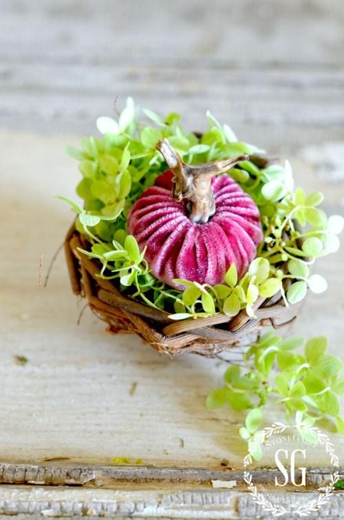5 BEAUTIFUL WAYS TO STYLE PUMPKINS-pumpkins-in nest- stonegableblog.com