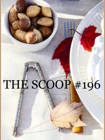THE SCOOP #196