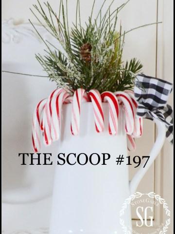THE SCOOP #197