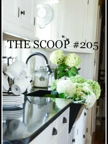 THE SCOOP #205