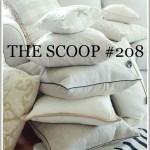 THE SCOOP #208