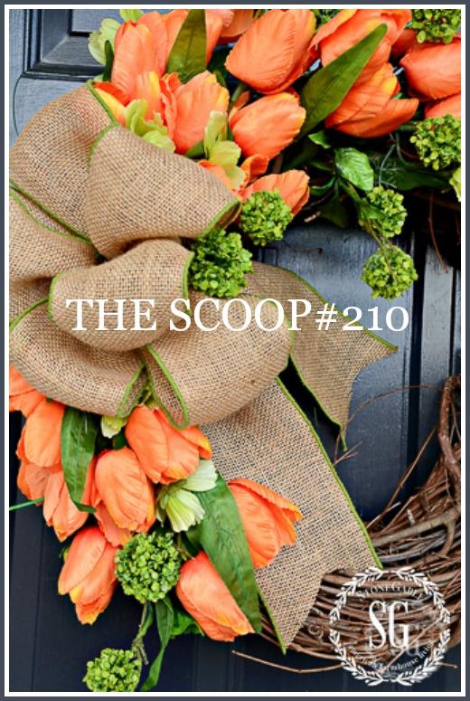 The Scoop 210-1