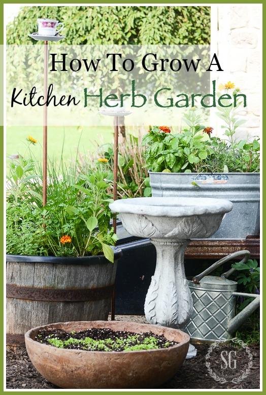 how to grow a kitchen herb garden