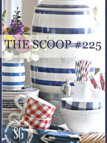 THE SCOOP #225