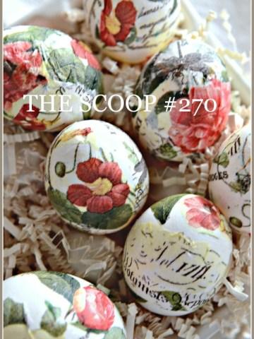 THE SCOOP #270