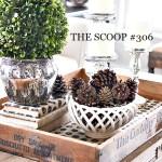 THE SCOOP #307
