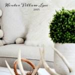 WINTER PILLOW LOVE 2018