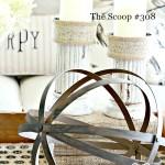 THE SCOOP #308
