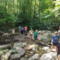 Hiking Tours with Professional Guide/Shuttle