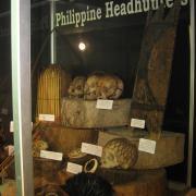 Philippine Headhunter Display 005