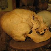 Prehistoric Peru 016