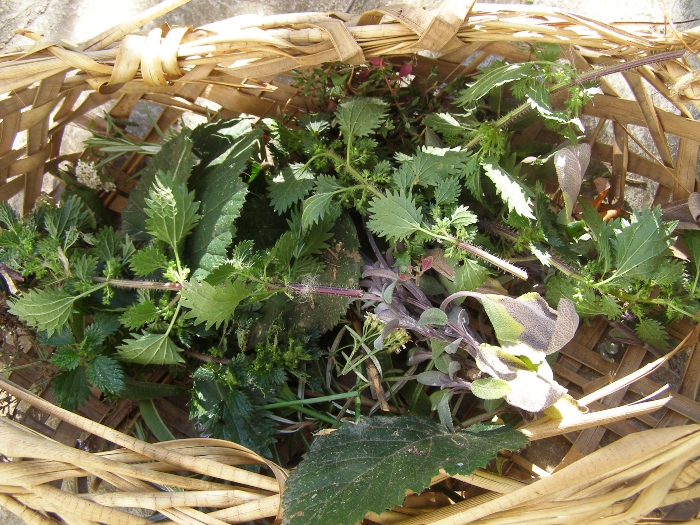 Fresh herbs to go into fire cider