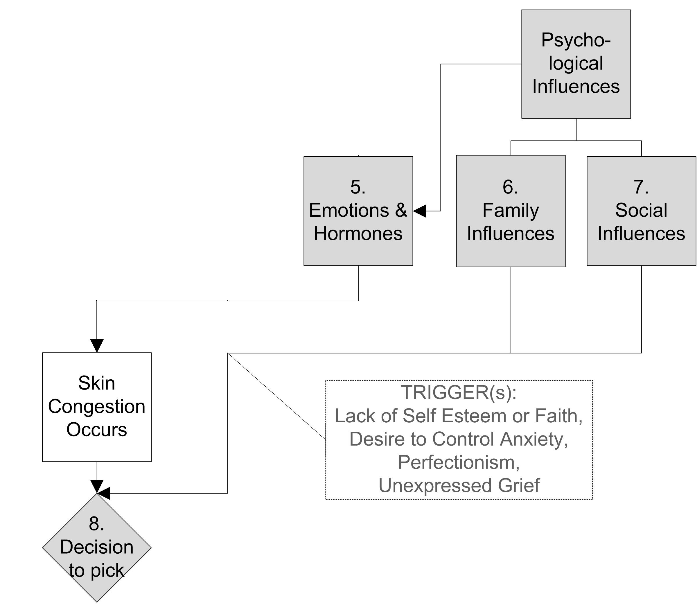 Excoriation Skin Picking Disorder Flow Chart - psych influences