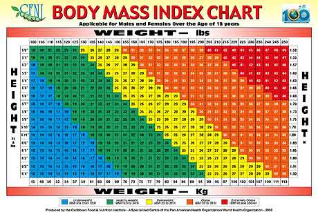 Bmi Chart For Women By Age Mersnoforum