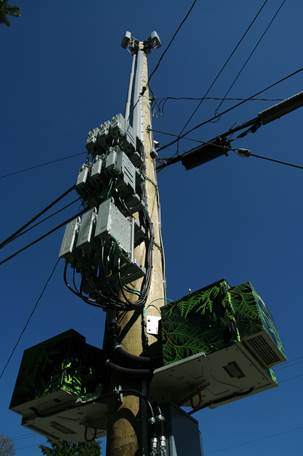 Microcell Pole-1