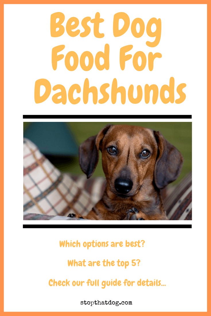 Looking to find the best dog food for Dachshunds? If so, our guide reveals the best options and highlights the top 5 based on dog owner reviews.