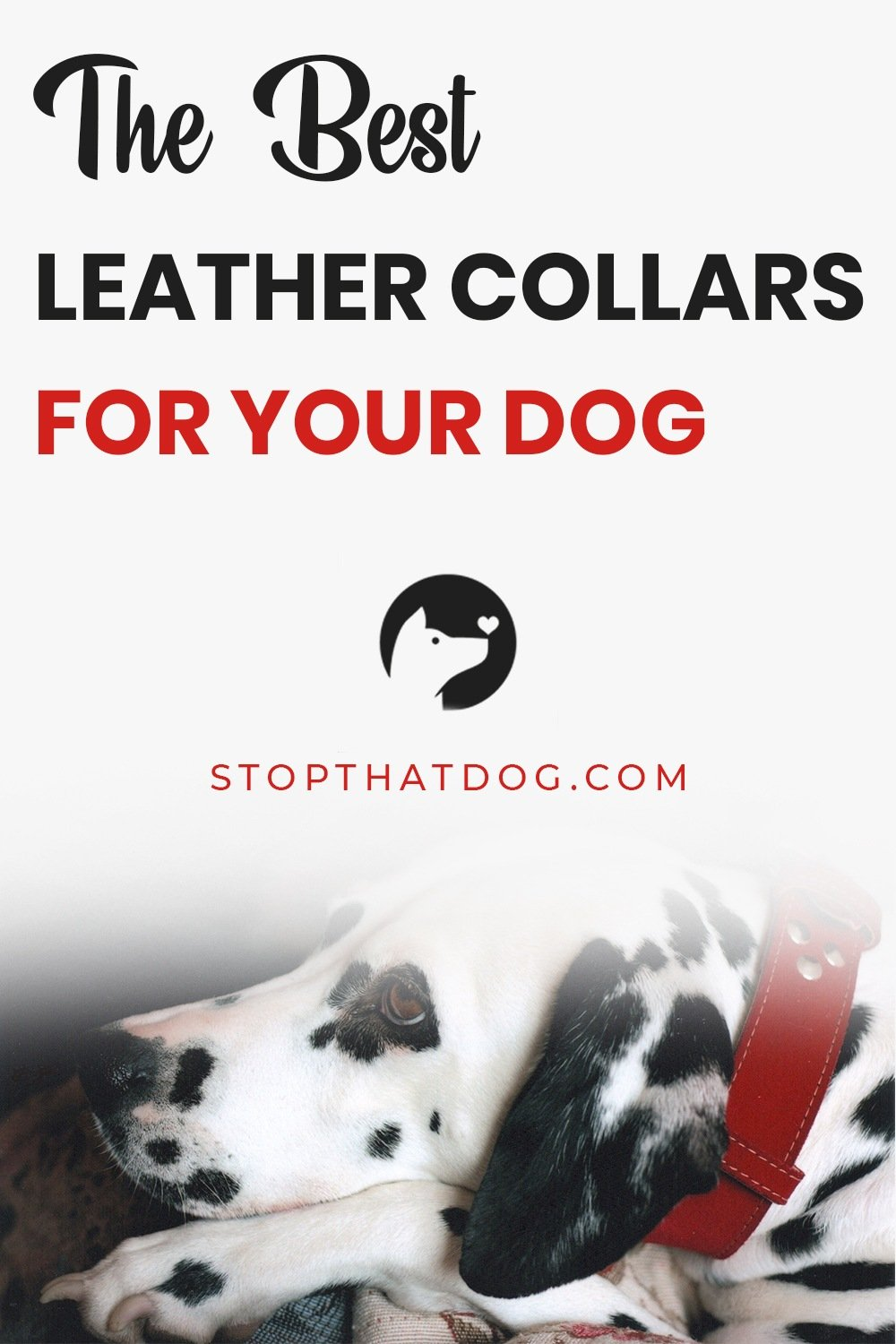 Looking to buy the best leather collar for your dog? This guide reveals the best collars on the market. These won\'t let you down, come take a look.