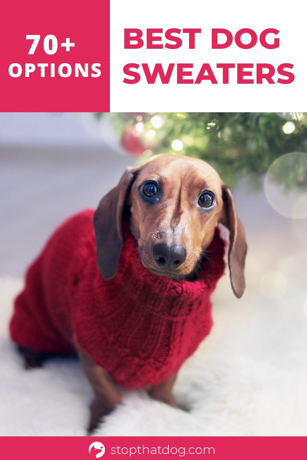 Want to buy the dog sweater for your furry friend? If so, our guide highlights over 70 of the best options on the market.