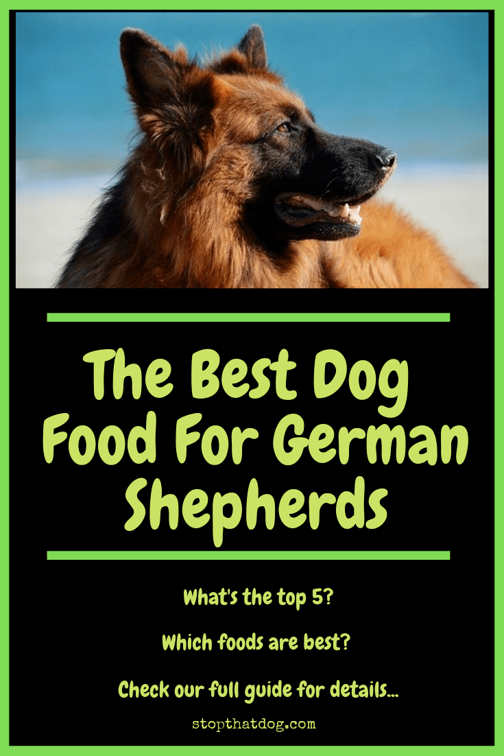 Curious about the best dog food for German Shepherds? If so, our guide reveals the best rated options and highlights the top 5 based on buyer reviews.