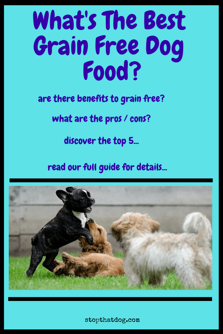 Looking to buy the best grain free dog food? If so, this guide reveals the top 5 options on the market, along with further tips on going grain free.