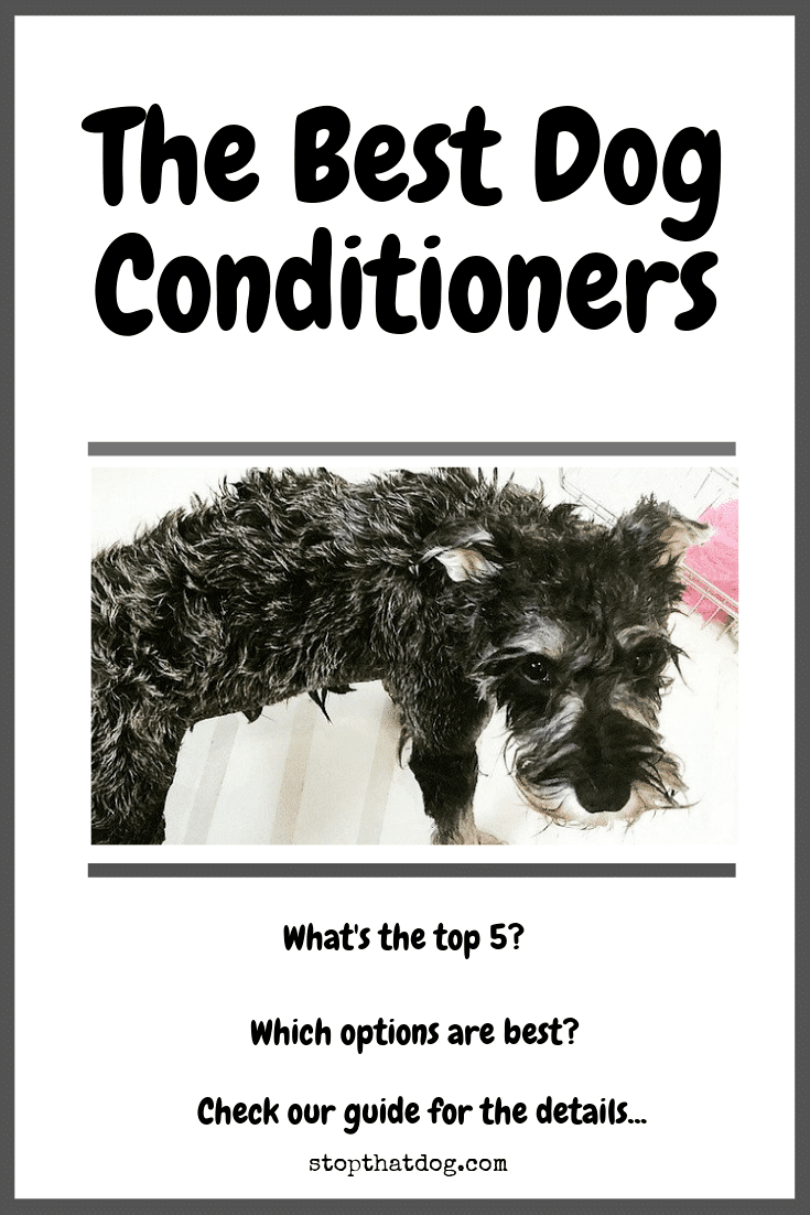 Looking for the best dog conditioners to look after your dog\'s coat and skin? If so, our guide highlights the top options based on buyer reviews.