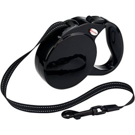 What's The Best Retractable Dog Leash? Our Favorite Picks 11