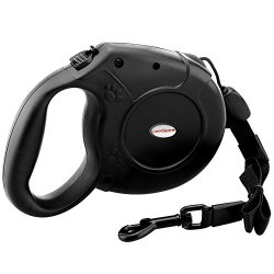 What's The Best Retractable Dog Leash? Our Favorite Picks 8