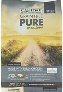What's The Best Dog Food For Older Dogs? 3