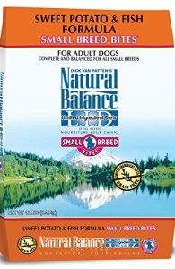 What's The Best Dog Food For Small Breeds? Our Ultimate Guide 9