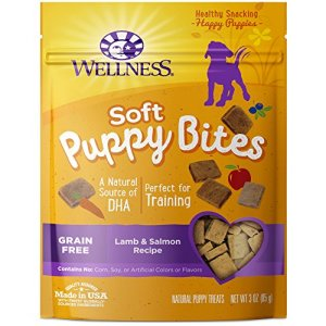 What Are The Best Dog Treats? Your Ultimate Guide 12