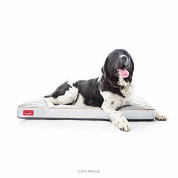 What's The Best Dog Bed For Large Dogs? Our Ultimate Guide 7