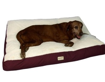 What's The Best Dog Bed For Large Dogs? Our Ultimate Guide 17