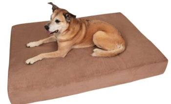 What's The Best Dog Bed For Large Dogs? Our Ultimate Guide 2