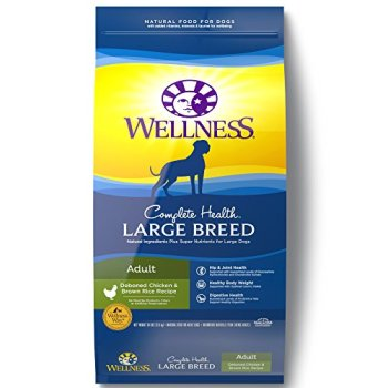 What's The Best Dog Food For Large Breeds? Our Top Picks 3