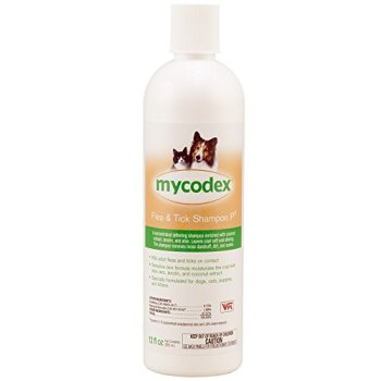 What's The Best Flea Shampoo For Dogs? 1