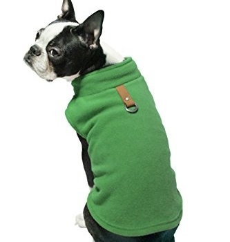 Best Dog Sweaters Our Favorite Picks Stop That Dog