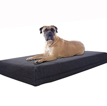 What's The Best Orthopedic Memory Foam Dog Bed? Our Complete Guide 15