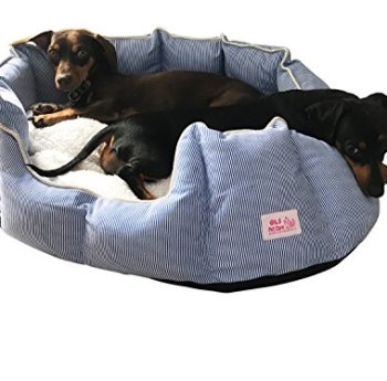 What's The Best Orthopedic Memory Foam Dog Bed? Our Complete Guide 13