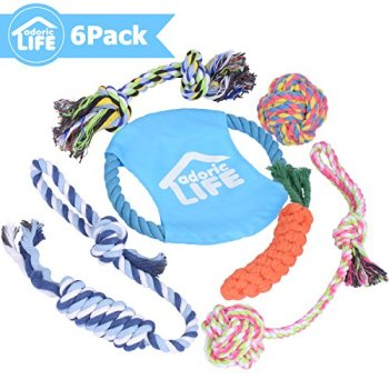 What Are The Best Dog Rope Toys? 16
