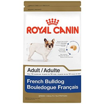 What's The Best Dog Food For French Bulldogs? A Complete Guide 7