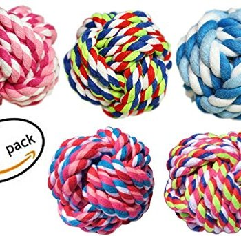 What Are The Best Dog Rope Toys? 15