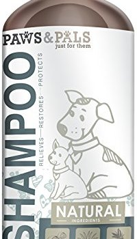 What's The Best Dog Shampoo For Odor? 10