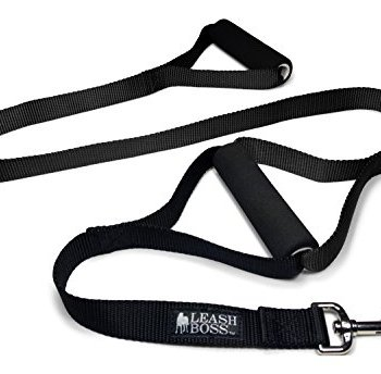 What Are The Best Leashes And Harnesses For Dogs That Pull? 11