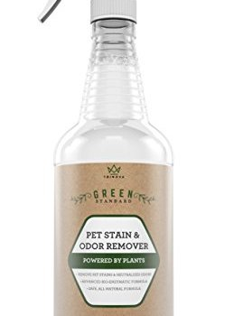 What's The Best Pet Odor Eliminator? Here's How To Remove Pet Odor From Your Home 9