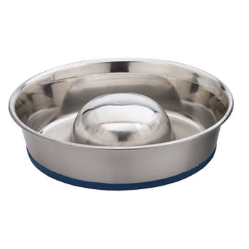 What's The Best Slow Feeder Dog Bowl To Slow Eating & Prevent Bloat Or Vomiting? 2
