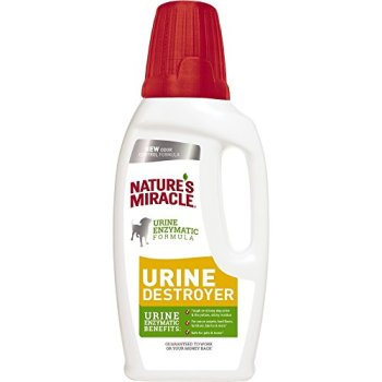 What's The Best Pet Odor Eliminator? Here's How To Remove Pet Odor From Your Home 5