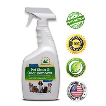What's The Best Pet Odor Eliminator? Here's How To Remove Pet Odor From Your Home 8