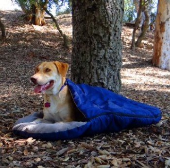 What's The Best Dog Sleeping Bag On The Market? 4