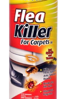 What's The Best Flea Powders For Carpets? Here's Our Top Picks 8